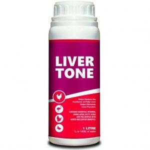 Ashkan - Liver Tone